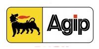 Ulei Hidraulic AGIP ARNICA 104/FR